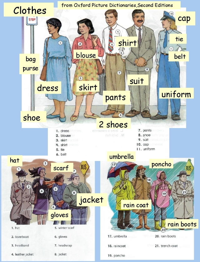 English clothing vocab photos and labels